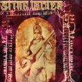 Le sitar indien